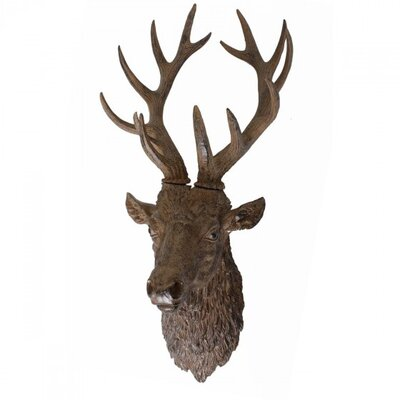 Harms Import Stag Antlers Wall Decor
