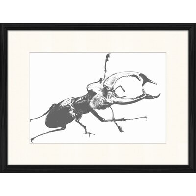 LivCorday Beetle Series 1 Framed Graphic Art