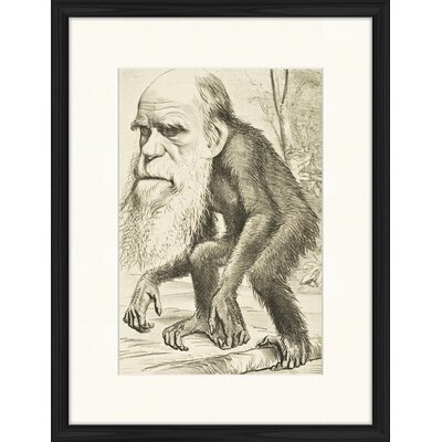 LivCorday Charles Darwin Framed Graphic Art
