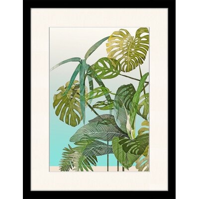 LivCorday Cheese Plant Illustration Framed Graphic Art
