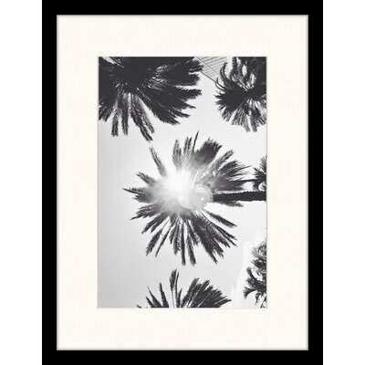 LivCorday Palms Framed Photographic Print
