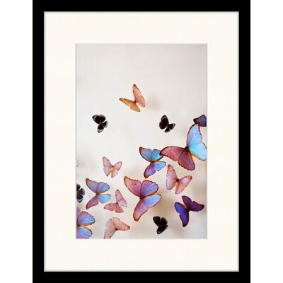 LivCorday Butterflies Framed Graphic Art