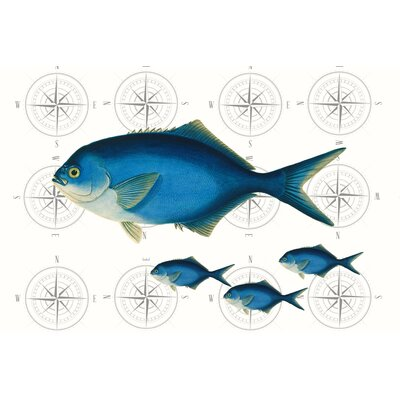 LivCorday Fish Graphic Art Wrapped on Canvas