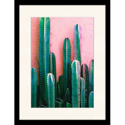 LivCorday Cactus 2 Framed Photographic Print