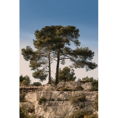 David & David Studio 'Route 2 Cretes' by Philippe David Photographic Print