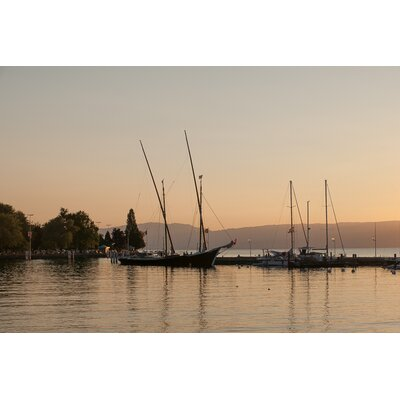 David & David Studio 'Lake Geneva 1' by Philippe David Framed Photographic Print