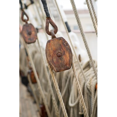 David & David Studio 'Ropes 3' by Laurence David Framed Photographic Print