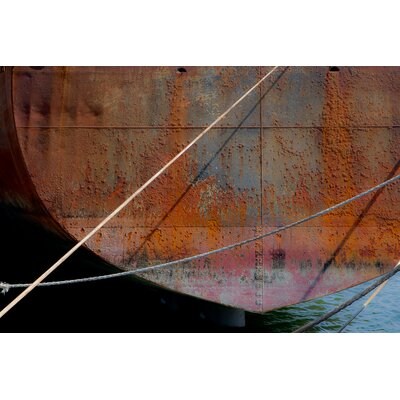 David & David Studio 'Rusty Shells 1' by Laurence David Framed Photographic Print