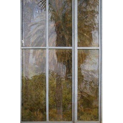 David & David Studio 'Details of Greenhouse 2' by Laurence David Framed Photographic Print