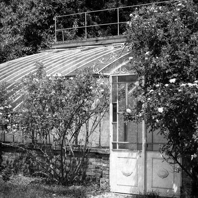 David & David Studio 'Small Greenhouse 1' by Laurence David Framed Photographic Print