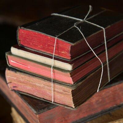 David & David Studio 'Books 4' by Laurence David Framed Photographic Print