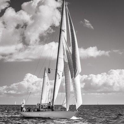 David & David Studio 'Sails Sepia 2' by Philippe David Framed Photographic Print