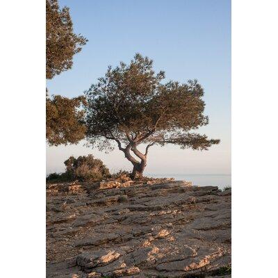 David & David Studio 'Route 1 Cretes' by Philippe David Framed Photographic Print