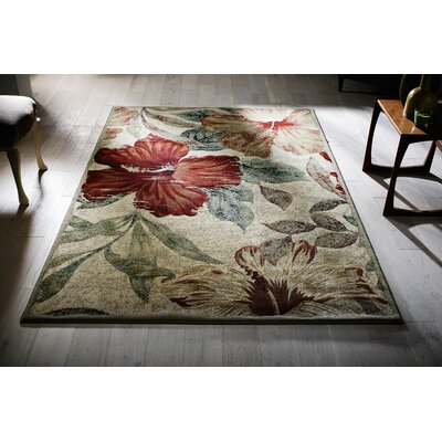 Andover Mills Starr Multi-Coloured Area Rug