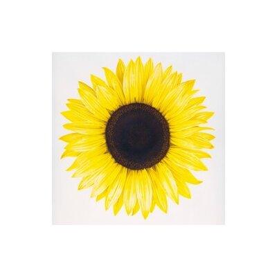 Andover Mills Sunflower Art Print Plaque