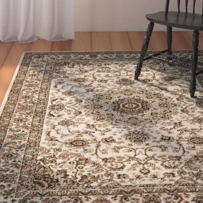 Andover Mills Ivory Area Rug
