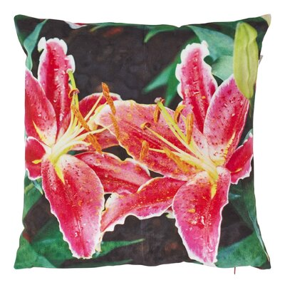 Dutch Decor Durlet Scatter Cushion