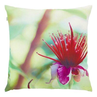 Dutch Decor Mabel Scatter Cushion