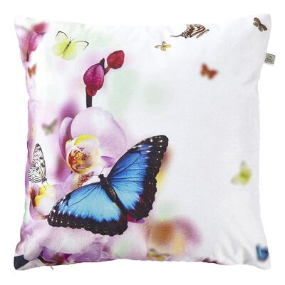 Dutch Decor Loraine Scatter Cushion