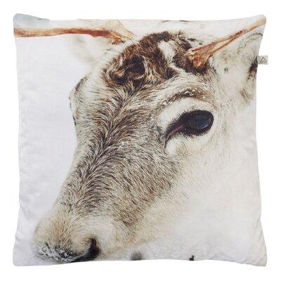 Dutch Decor Moose Scatter Cushion