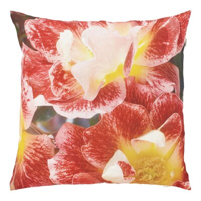 Dutch Decor Orchid Scatter Cushion