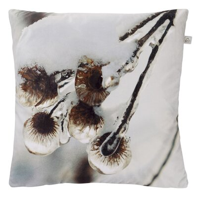 Dutch Decor Mirales Scatter Cushion