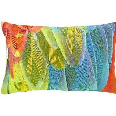 Dutch Decor Olex Scatter Cushion
