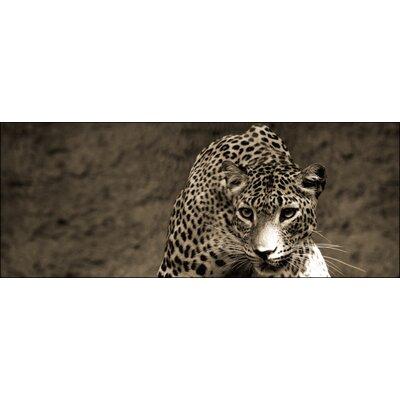 Pro-Art Glasbild Leopard, Kunstdruck