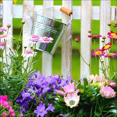 Pro-Art Glasbild Lovely Garden II, Kunstdruck