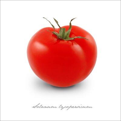 Pro-Art Glasbild Tomate, Kunstdruck