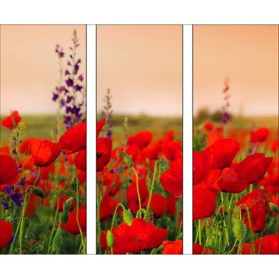 Pro-Art Glasbild Summer Poppy Field, Kunstdruck