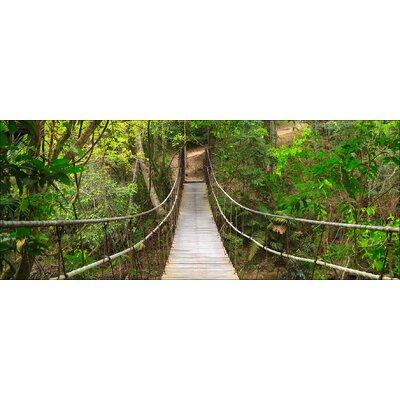 Pro-Art Glasbild The Jungle, Kunstdruck