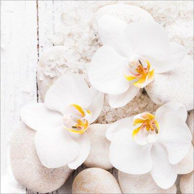 Pro-Art Glasbild White & Yellow Flowers III, Kunstdruck