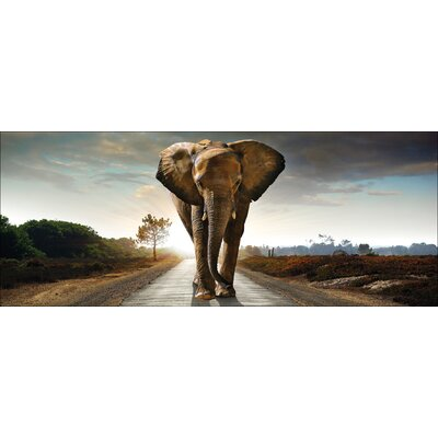 Pro-Art Glasbild Elephant, Kunstdruck