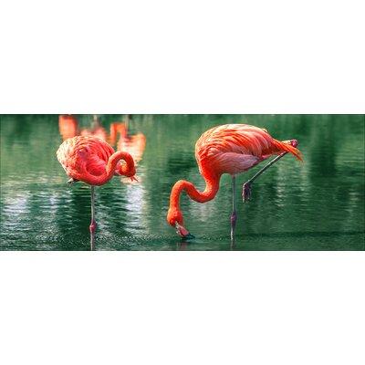 Pro-Art Glasbild Flamingo I, Kunstdruck