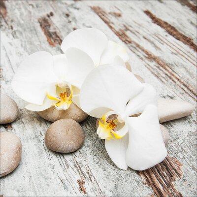 Pro-Art Glasbild White & Yellow Flowers IV, Kunstdruck