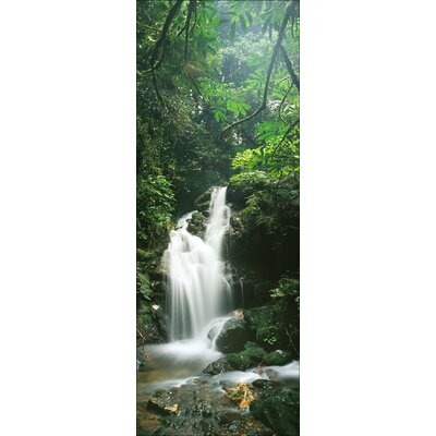 Pro-Art Glasbild Waterfall & Plants, Fotodruck