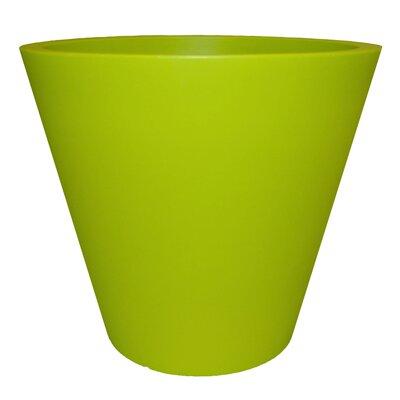 Cosmopolitan Plastic Pot Planter