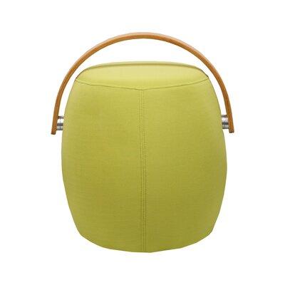 Jeremiah Bucket Garden Stool Color: Green