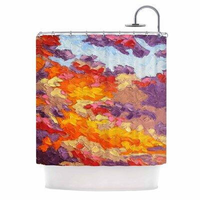 Evening Multicolor Sky by Jeff Ferst Sunset Sky Shower Curtain
