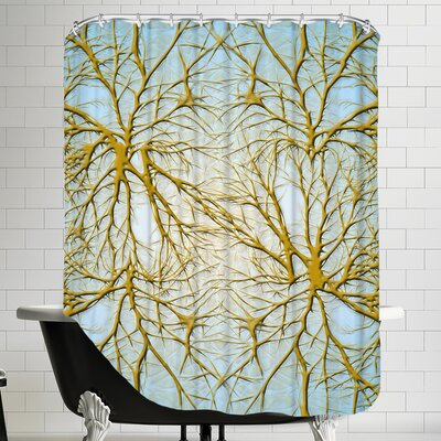 Neurons Medical Cell System Shower Curtain Color: Blue