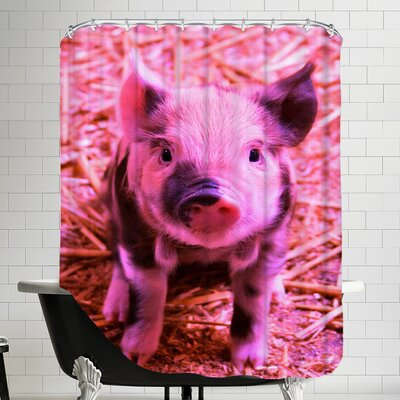 Pig Piglet Farm Shower Curtain Color: Funky