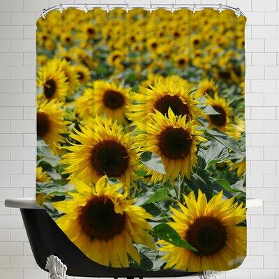 Sunflower Bloom Field Shower Curtain