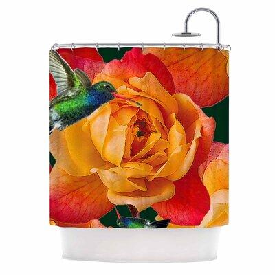 'Roses in Hummingbird' Nature Shower Curtain