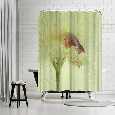 Zina Zinchik Summer Rain Shower Curtain