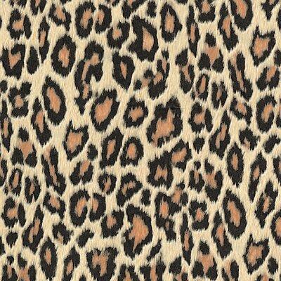FABLON Leopard Wall Sticker