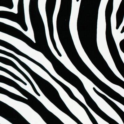 FABLON Zebra Wall Sticker