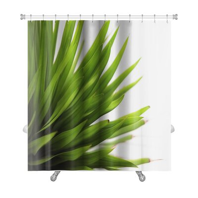 Leaves Closeup of a Leaf Isolated Premium Shower Curtain