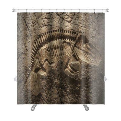 Animals Model Dinosaur Fossil Premium Shower Curtain
