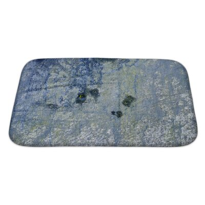 Art Alpha Old Foil with Modern Painting Bath Rug Size: Large
